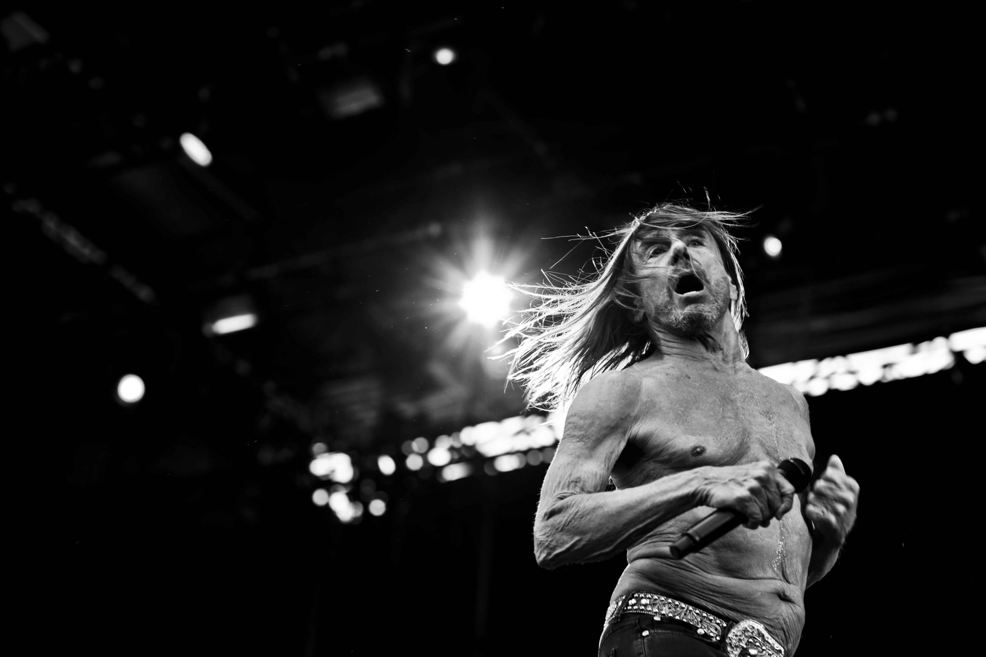 Iggy Pop Photo Patrice Molle
