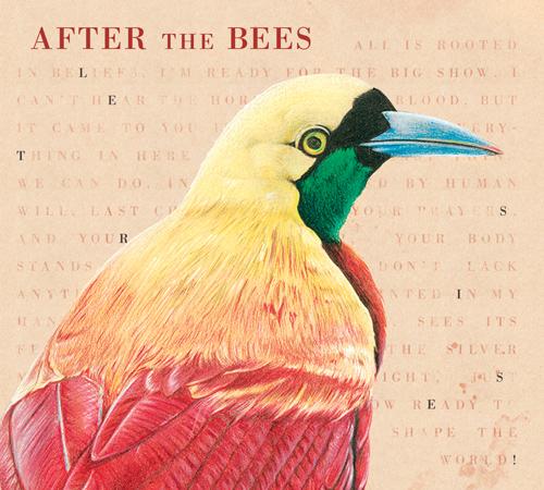 Pochette-album-Lets-Rise-design-Coralie-Coton-illlustration-Elise-Roy_web