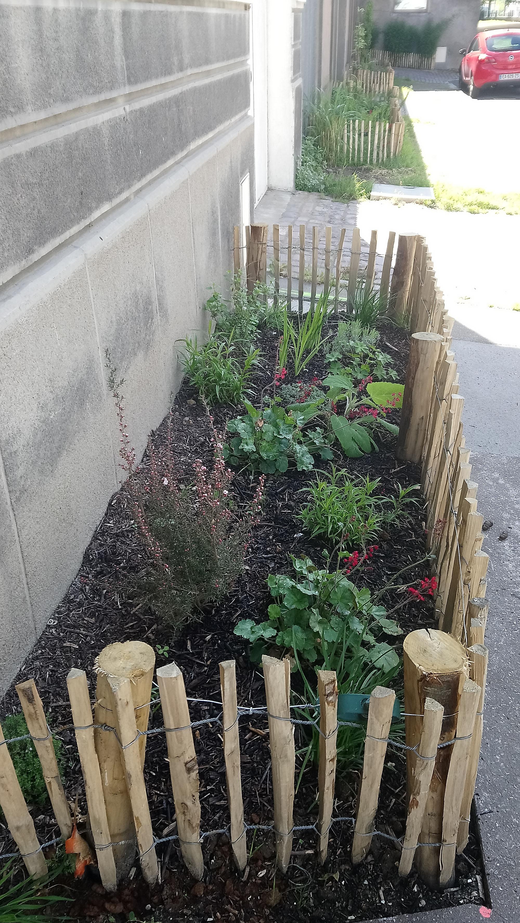 d17ee2389fb5 Ma rue est un jardin en fleurs - Fragil - Culture, société ...
